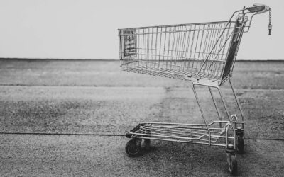 18 Questions to ask a Shopping Cart Vendor